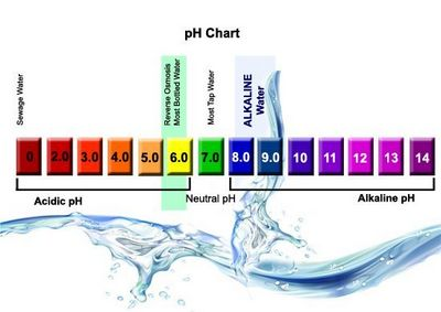 How to Drink Alkaline Water after they began to consume
